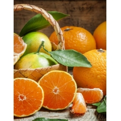 PAX MOLY Tangerine Smoothie Cream