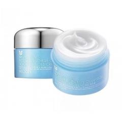 MIZON  Acence Blemish Control Soothing Gel Cream