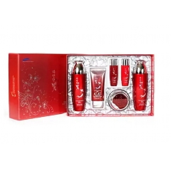 DAANDANBIT Red Ginseng 4 Set