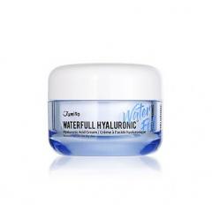 JUMISO Waterfull Hyaluronic Cream